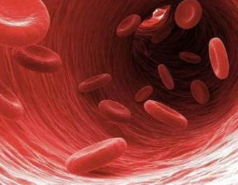 用血粘度分析仪自查血粘度